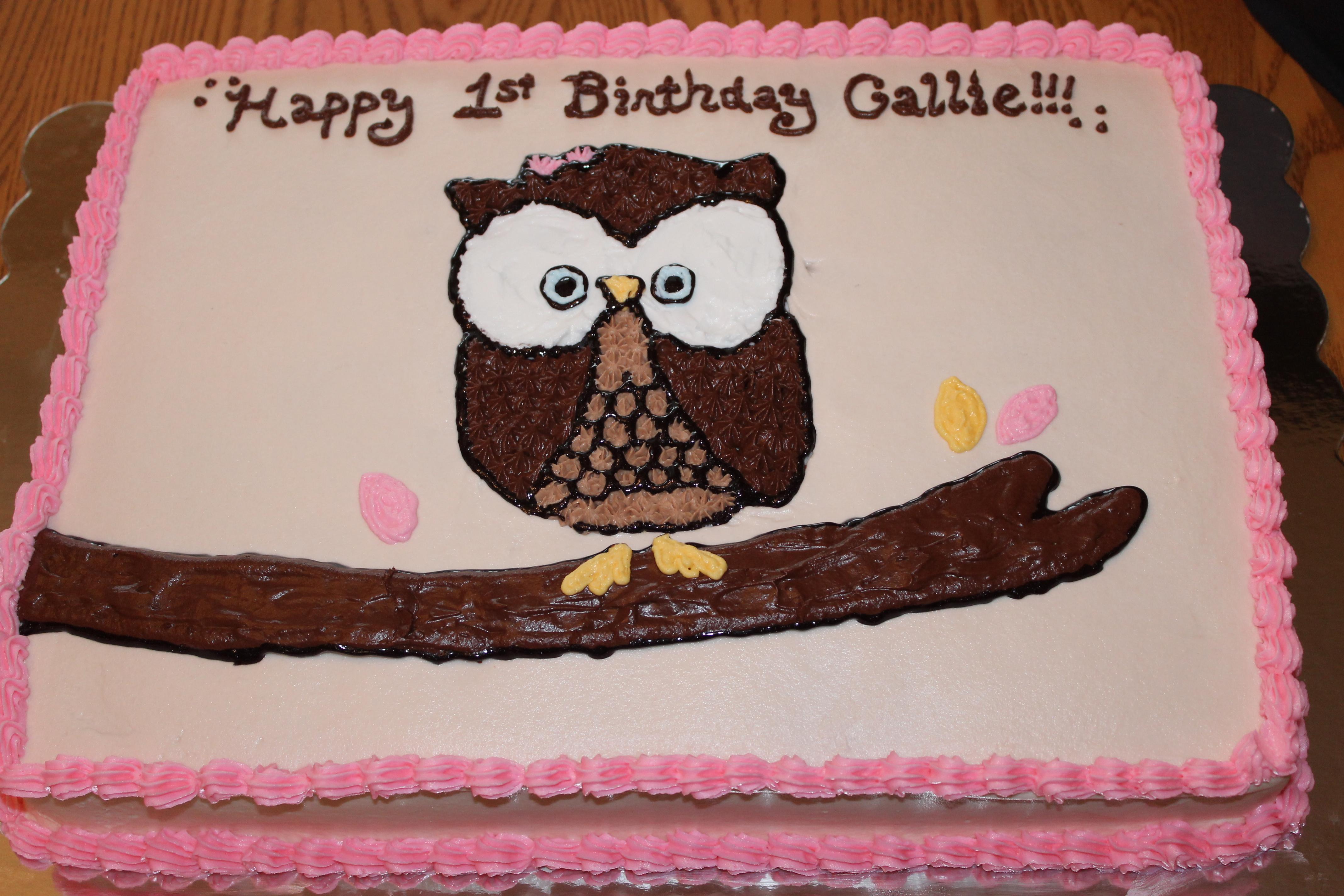 Owl Cake And Smash Cake Pixie Cakes